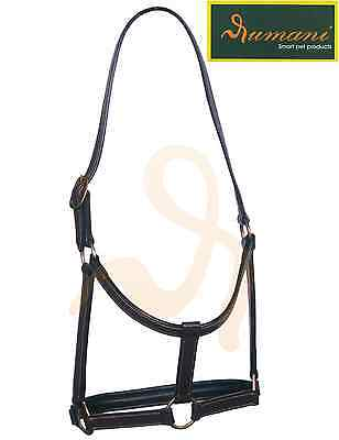 Rumani Brand DD Leather Halter with Solid Brass Hardware