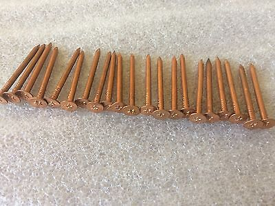 "20 Vintage Decorative 1 3/4"" Copper Nails  , Star On The Head   unused"