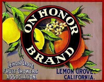 El Cajon San Diego California Silver Gate Lemon Citrus Fruit Crate Label Print