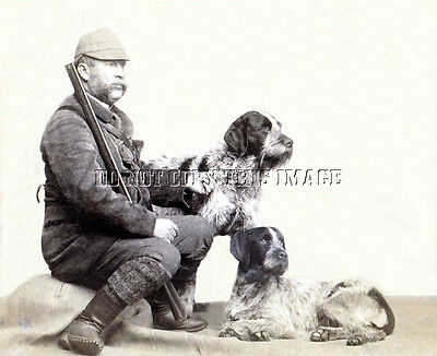 ANTIQUE REPRINTED 8X10 c.1890 PHOTO HUNTER GERMAN DRAHTHAAR POINTER BIRD DOGS