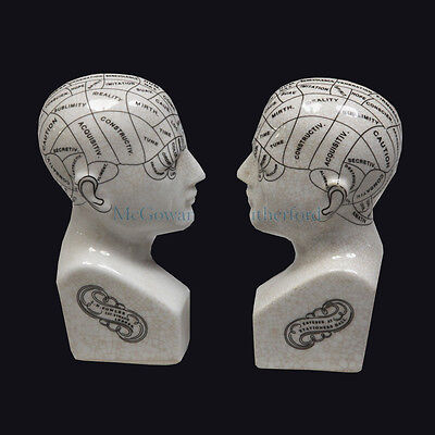Antiqued Ceramic Phrenology Bookends Set. Gothic Library. Horror