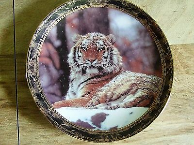 Tiger Collector Plate Bradford Exchange Snowy Monarch 1994 Portraits of Majesty