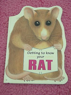 pet rat book for kids - getting to know your rat