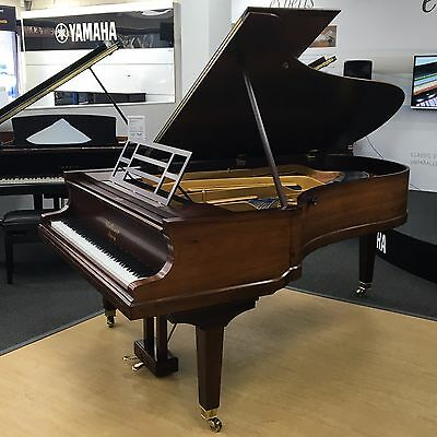 Bluthner Style X 7'6 grand piano in rosewood, c.1904