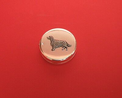 Irish Setter Motif on Silver Plated Tape Measure BOXED Mother Christmas Gift NEW
