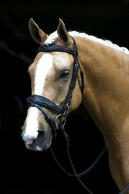 NEW Black Fancy Stitch SNAFFLE BRIDLE WITH REINS - Pony Cob Full WB - FREE P&P!