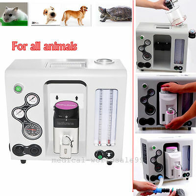 Sale Portable Medical Anaesthesia Machine for Veterinary Animals Instrument