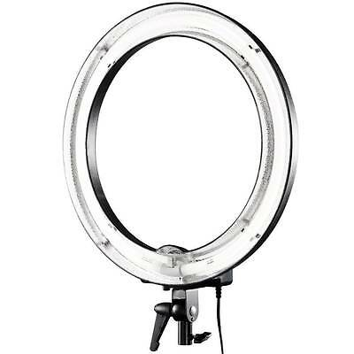 "Continuous Ring Light 12"" & Diffuser - 35w - Portrait Photography 5600k Daylight"