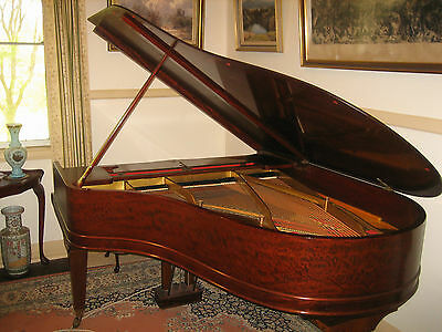 Steinway & Sons Antique Grand Piano Serial # 81130 1894/1895?