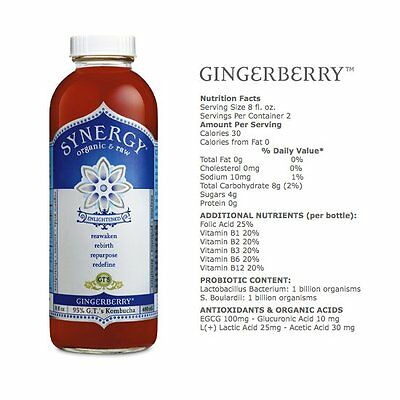 GTs Enlightened Synergy Organic and Raw Kombucha Gingerberry, 16 oz - 12/case