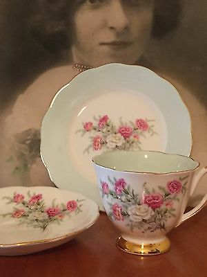 Antique Vintage Trio Cup Saucer Plate Afternoon High Tea Queen Anne Carnations
