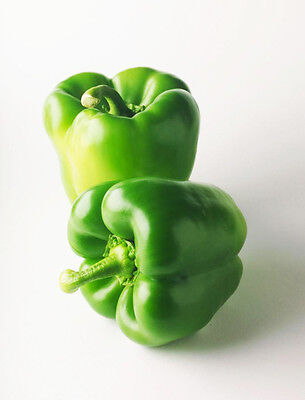 100 Green Sweet Pepper Seeds Paprike Capsicum Organic S042