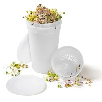 Easy Sprout Sprouter - the easy way to sprout seeds and wheatgrass - Sproutamo