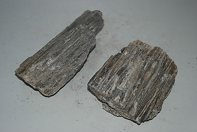Natural Aquarium Stunning Sparkling Wood Stone Suitable For All Aquariums C
