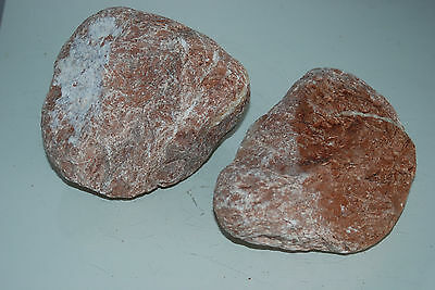 Natural Aquarium Stunning Tahiti Stone Suitable For All Aquariums 4 • EUR 18,54