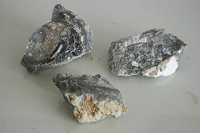Natural Aquarium Grey Mottle  Rock 3 Pieces Suitable for All Aquariums MGRB1B • EUR 10,93