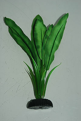 Aquarium Silk Plant Echinodorus Broad Leaf Plant Dark Green 20 cms High