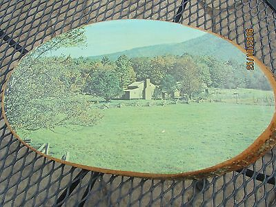 Cherokee, NC Cades Cove Great Smoky Mountains Wood Tree Stump Slice Art Picture