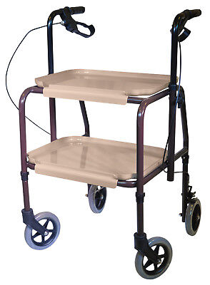 Handy Trolley With Brakes 713BE