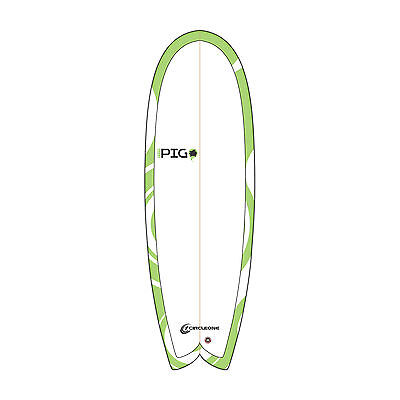 """Funky Pig 5'6"""" Swallow Tail Thruster plenty of volume ideal early starter board"""