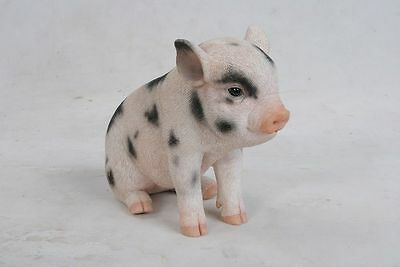 Pig - Sitting Baby Pig with Black Spots Statue