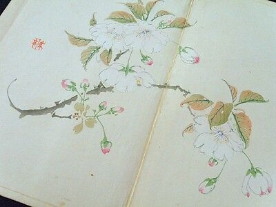 Japanese KATEI Bird-and-flower painting Woodblock print Album #5 1894