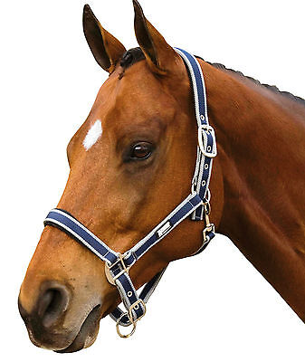 Roma Halter - Webbing Blue Grey New with tags