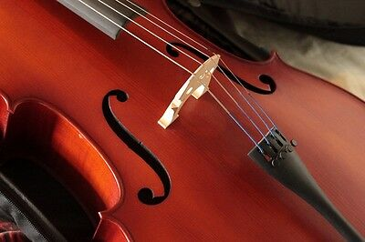 Hidersine Vivente 4/4 Size Cello Outfit - CUSTOMISED