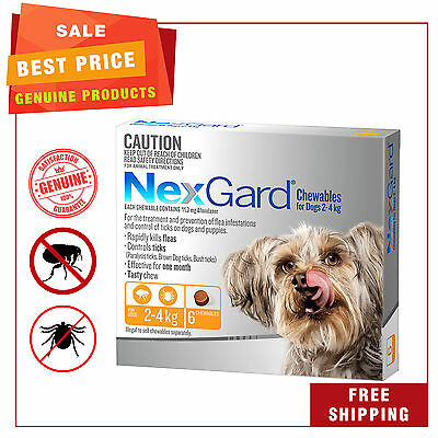 NEXGARD NEXGUARD for Dogs 2 - 4 Kg ORANGE Pack 6 Chews Flea and Tick Treatment