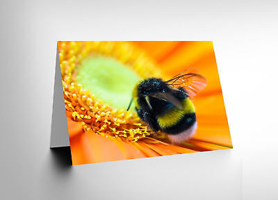 Card Greeting Birthday Bumble Bee Flower Gift Cl1908