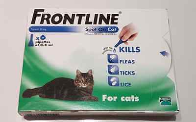 Frontline Spot on Flea Treatment for Cats - 6 Pack - FREE 1st CLASS POST