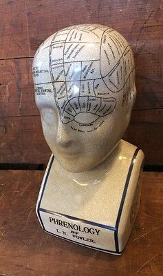 "Porcelain L.N. Fowler Phrenology Scientific Psychology 11"" Bust Head"