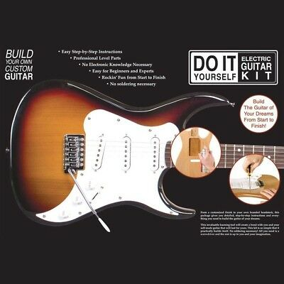 New Axl Bs-Diy Do It Yourself Strat Style Electric Guitar Build Kit +Ships Free