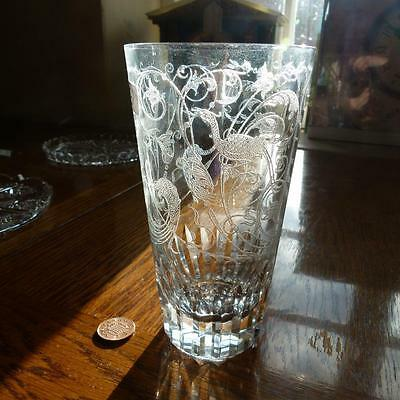 Quality Baccarat France Drinking Glass EXOTIC BIRD of PARADISE Etched Crystal #C
