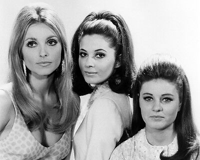 Valley of the Dolls Sharon Tate Patty Duke Barbara Parkins pose 8x10 Photo
