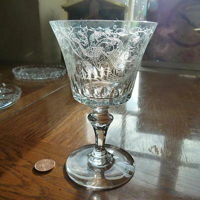 Vintage Baccarat France Wine Glass EXOTIC BIRD of PARADISE Crystal #B