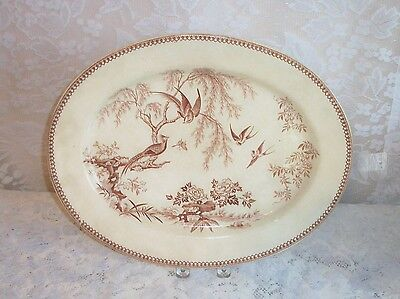 1880s Aesthetic Movement Tropical Birds and Butterfly Sepia 16 Inch Oval Platter