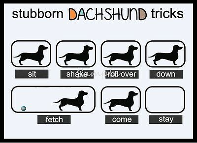 DACHSHUND Stubborn Tricks Funny LARGE FRIDGE MAGNET