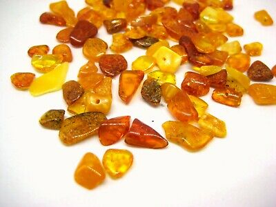 Polished Natural Baltic Amber Holed Beads 70 Chips + 1 Plastic Screw Clasp