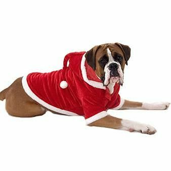 Extra Large Luxury Dog Santa Suits