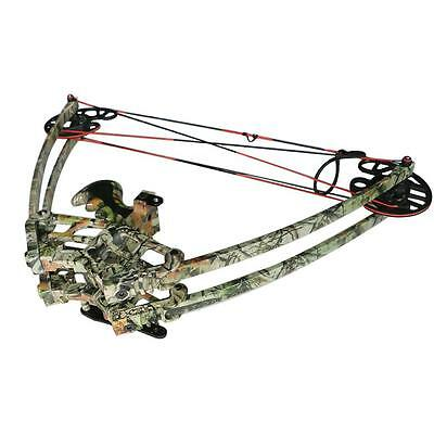 50lbs Triangle Compound Bow Right Left Hand Adult Archery Hunting Bow 270fps