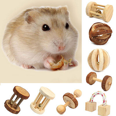 Natural Pine Dumbell Unicycle Bell Roller Rat Rabbit Pets Chew Play Wood Toy NEW