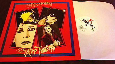 "Specimen ‎– Sharp Teeth ORIG '85 the trust 12"" siouxsie & the banshees / GOTH"
