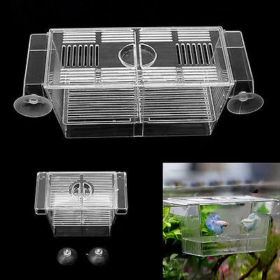Fish Breeding Hatchery Young Fish Incubator Aquarium Isolation Breeder Box S/L