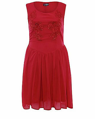 Lovedrobe Be Simply Fabulous Plus Size 20 Red Embroidered Sequin Skater  DRESS
