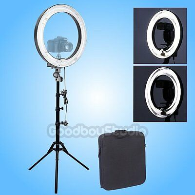 [AU] Studio 600W 5500K 48cm Dimmable Studio Ring Light Lamp w/ 185cm Light Stand