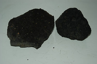 Natural Aquarium Black Lava Rock 2 Small Pieces Suitable for All Aquariums BD
