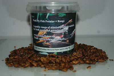 FMF Dried Silkworm Pupae For Koi Carp Fish Birds & Reptiles Approx 1600g Tub