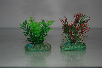 Aquarium Small Nano Plants x 2 Green & Green / Red approx 4 cms