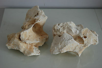 Aquarium Natural Coral Cichlid Rock 2 Pieces Suitable For All Aquarium Use BA13